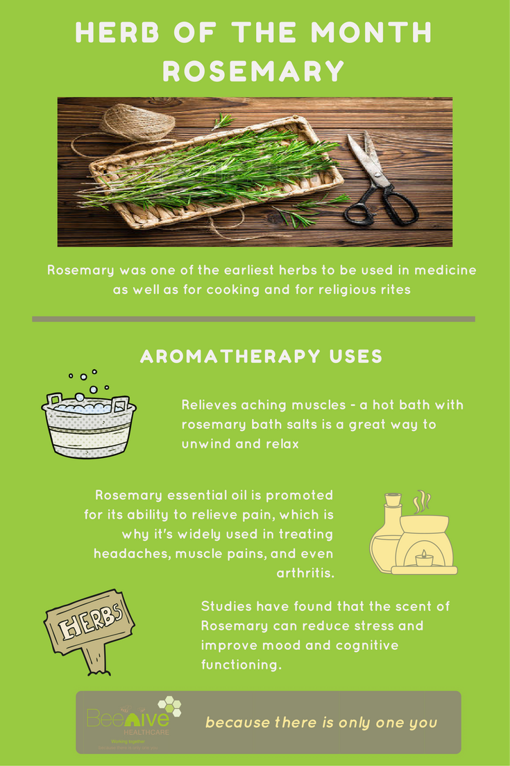 Infographic on our aromatherapy herb of the momnth - Rosemary